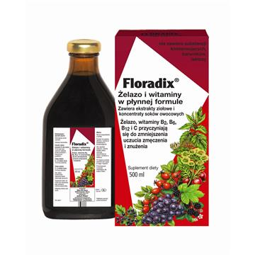 JOY DAY BIO KONCENTRAT GŁÓG 500ML