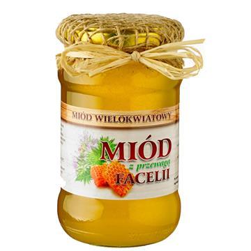 Allnutrition Green Caffee zielona kawa 90 szt.